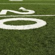 Royalty-Free Stock Photo: Twenty yard line