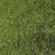 Stock Photo: Artificial turf
