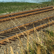 Railroad — Stock Photo #2587198