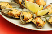 Baked mussels — Stock Photo