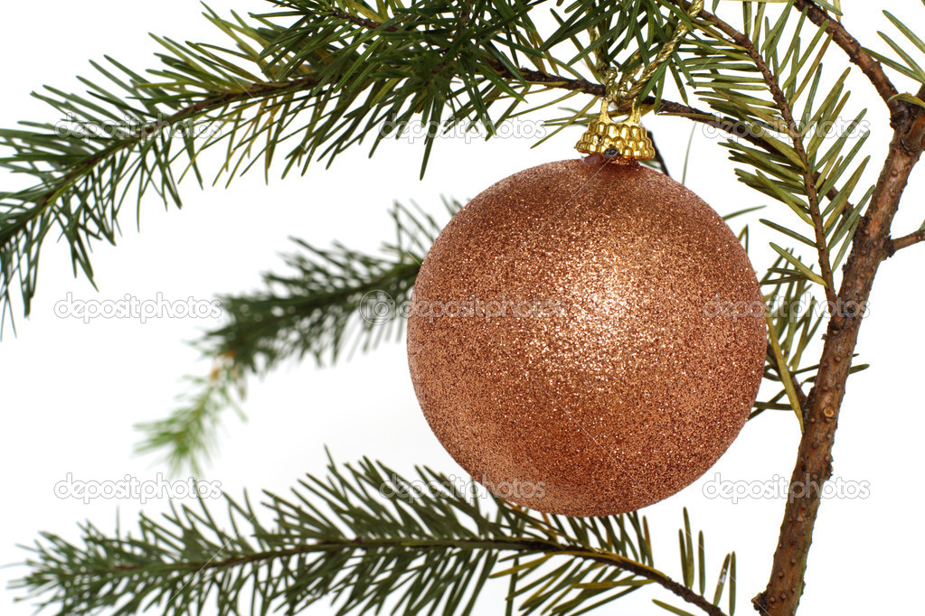 Gold Christmas ornament hanging on a tree — Stock Photo #2587300