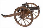 The Historic Cannon — Stock Photo
