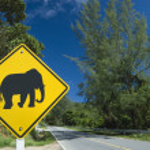Elephant Sign — Stock Photo