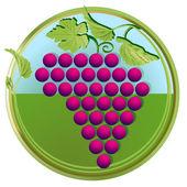 Rote Weintraube — Stock Vector