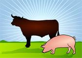 Rind und Schwein — Stock Vector