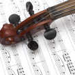 Fragment of violin — Stock Photo