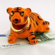 New Year of the Tiger — Stock Photo
