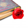 Very old book with rose. — Stock Photo