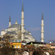 Blue Mosque in Istanbul — Stock Photo #2384937