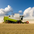 Stock Photo: Harvesting Combine