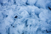 Ice texture of frozen sea — Stock Photo