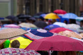 Crowd of with umbrellas — Stock Photo