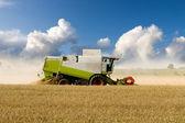 Harvesting Combine — Stock Photo