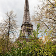 Eiffel Tower — Stock Photo #2449591