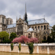 Notre Dame de Paris — Stock Photo #2511043
