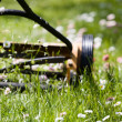 Hand lawn mower - Stock Photo