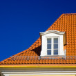 Tiled roof and one window — Stock Photo #2511436