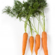 Fresh carrots with leafs on white — Stock Photo