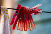 Red plastic clothespins — Stock Photo