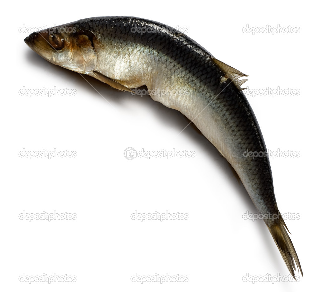 Salted herring on white background with shadow. Clipping path included. — Stock Photo #2511564