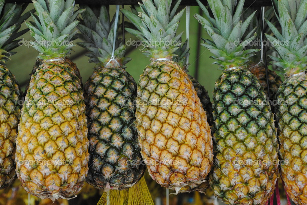 Pineapple in fair, Natal, Brazil  Stock Photo #2620573