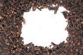 Clove background — Stock Photo