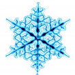Royalty-Free Stock Photo: Snow flake