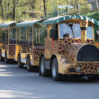 ZOO train — Photo