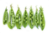 Pea — Stock Photo