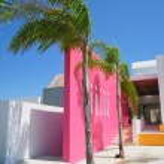 entrée spa resort tropical avec palmier — Photo