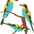 Royalty-Free Stock Vector Image: Vector bee-eaters