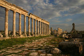 The Columns of Apameia — Stock Photo
