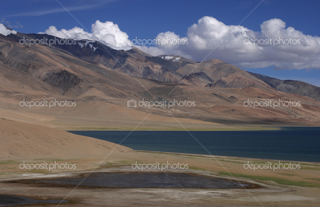 At Changthang Plateau — Stock Photo #2362517