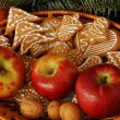 Gingerbreads for christmas — Stock Photo
