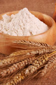 Flour with ear of wheat — Stock Photo