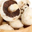 The champignons - detail — Foto de Stock