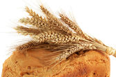 Detail of ear on the homemade bread — Stock Photo