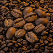 Bean of coffee — Stock Photo