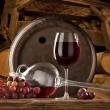 Still life with red wine — Stock fotografie