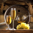 Still life with white wine — Stock Photo