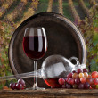 Still life with red wine — Stockfoto