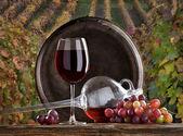 Nature morte avec vin rouge — Photo