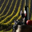 The rewine with vineyard on background — Stockfoto #2417924