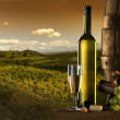 The wine with vineyard on background - Stock Photo