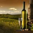 el vino con el viñedo en el fondo — Foto de Stock