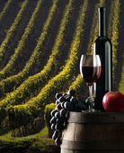 The rewine with vineyard on background — Stock Photo
