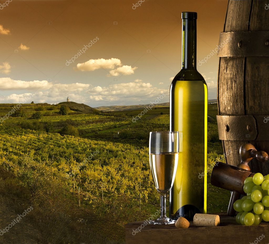 the wine and vine with vineyard on background  — Foto de Stock   #2417952