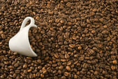 Coffee cup and coffee beans — Stock fotografie