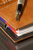 Leather Agenda and fountain pen — Stock Photo