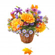 Bouquet of autumn flowers — Stock Photo